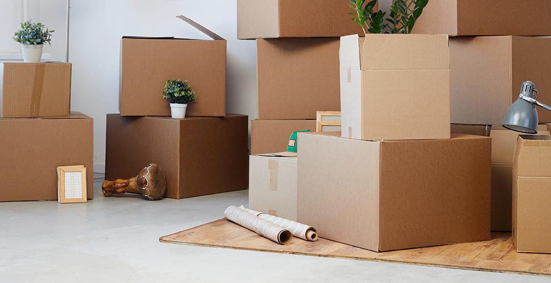 Organiser & Declutter